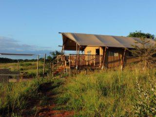 YALA_Sunshine_sunset_Hluhluwe_Bush_Camp_Africa - Safarizelte & Glamping Lodges